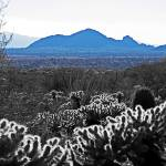 """McDowell Sonoran Preserve - Camelback Mountain"" by johngiroux"