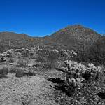 """McDowell Sonoran Preserve"" by johngiroux"