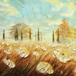 """""""Field of White Blossoms I"""" by ChristopherClark"""