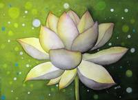 Lotus Dream