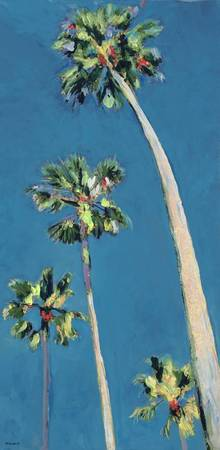 Blue Sky and Palm Trees