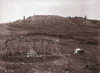 Sweat Lodge Frame (Cheyenne)