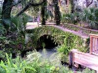 Bridge at Juniper Springs, Florida.
