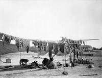 In camp, cutting and drying meat (Dakota Sioux), 1