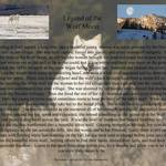 """Legend of the White Wolf"" by wildlifegiftstore"
