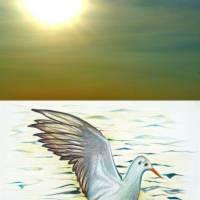 Bright Gull Horizon by Louise Dionne