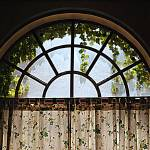 """Ivy Window"" by madworld"