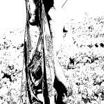 """B Pencil"" by catoninefineart"
