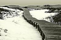 Plum Island Boardwalk