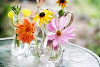 Spring Flowers in Tiny Vases