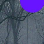 """""""2-12-2013ABCDEFG"""" by TheBebirianArtCollection2"""