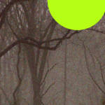 """2-12-2013ABCDEFGHIJKLMNOPQR"" by TheBebirianArtCollection2"