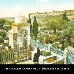 """JERUSALEM  GARDEN OF GETHSEMANE  img233"" by vintagephotos1900"