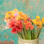 """Flowers in Bucket by Peeling Paint Wall"" by charker"