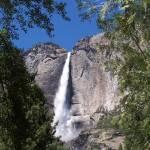 """""""Yosemite Falls"""" by lfagerland"""