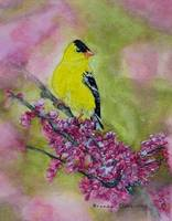 Songbird, Colorful Spring and Summer art print by
