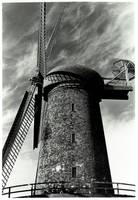 Dutch Windmill #8