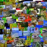 """""""Mental landscape"""" by paulihyvonen"""