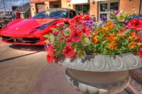 Flowers and a Ferrari