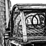 """Weathered Trap"" by CCYPhotography"