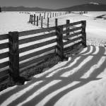 """Winter Fence"" by Inge-Johnsson"