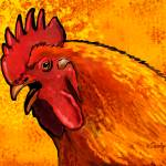"""Rooster Head"" by Tim"