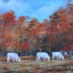 """""""The Old Camp   cows, pastures"""" by kiphayes"""