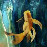 """""""Fantail Koi"""" by DSchellack"""