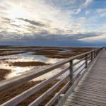 """Bass Hole Boardwalk"" by richietown"