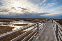Bass Hole Boardwalk