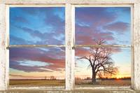 Beautiful Morning Rustic White Picture Window