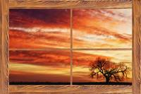 Morning Has Broken Barn Wood Picture Window View