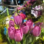 """Philadelphia Flower Show March 1st 2013"" by Lucine"
