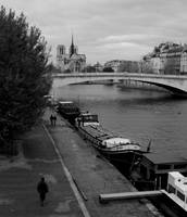 seine and notre dame - Paris