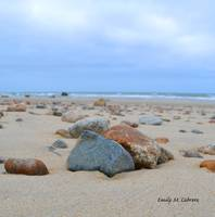 Rocks on the Beach, Cape Cod, March 2013
