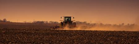 Sowing Dust