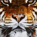 """""""Tiger Love"""" by pattifriday"""