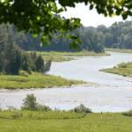 """""""Saugeen River"""" by WandaFitzgerald"""