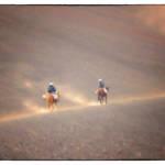 """ON HORSEBACK HALEAKALA VOLCANO"" by shaynaphotography"