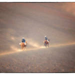 """ON HORSEBACK HALEAKALA VOLCANO"" by shaynaphotography"
