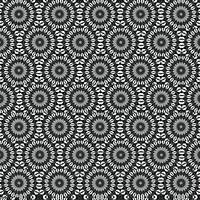 Kaleidoscope :: Black and White Alt