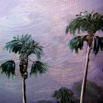 """Palm Tree Tops"" by mazz"