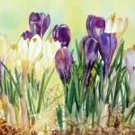 """Spring Light"" by KimStenbergFineArt"
