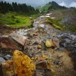 """Skyline Trail - Mount Rainier"" by cruxphotography"