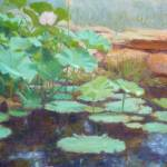 """Waterlily Dreams"" by KimStenbergFineArt"