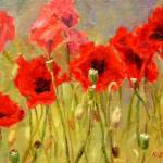 """Red Poppies"" by KimStenbergFineArt"