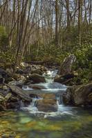Leconte Stream