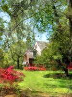 Suburban House With Azaleas