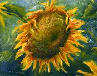 Sunflower Face Art