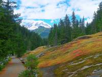 Box Canyon Trail - Mount Rainier National Park